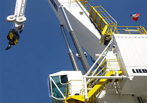 Crane Inspection & Service, Manning And Management